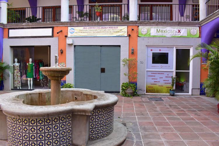 Ginecólogas en Ixtapa Zihuatanejo, Doctora Lorenia Escarcega Morales. Ginecología, Colposcopía, Cryocirugía, Láser, Electrocirugía en Ixtapa Zihuatanejo