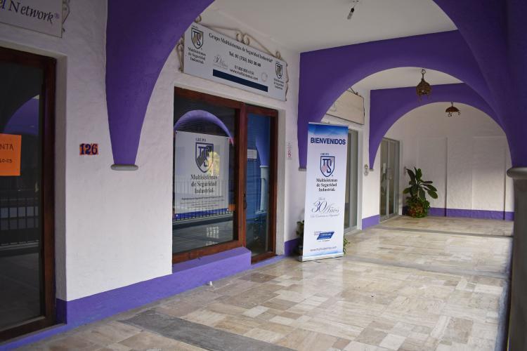 Grupo Multisistemas de Seguridad Industrial en Ixtapa Zihuatanejo. Empresas de Guardias y Seguridad Privada en Ixtapa Zihuatanejo