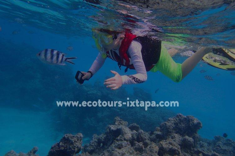 Tours en Ixtapa Zihuatanejo. Tour de Pesca Deportiva, Snorkel, ATV (Cuatrimotos), Stand Up Paddle SUP, Liberación de Tortugas, Playa Las Gatas, La Isla Ixtapa, Zona Arqueológica de Xihuacán, Surf, Surfing en Ixtapa Zihuatanejo