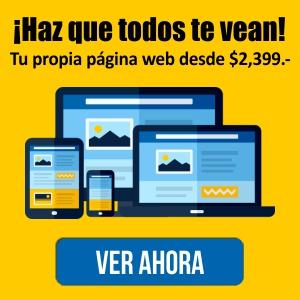 Páginas Web en Ixtapa Zihuatanejo. Tiendas Virtuales en Ixtapa Zihuatanejo. Desarrollo Web en Ixtapa Zihuatanejo. Agencias de Publicidad en Ixtapa Zihuatanejo. Publicidad digital en Ixtapa Zihuatanejo